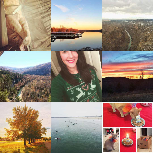 Figure 2. A collage of nine Instagram images. Row 1 (L to R): My cat; Lake Fayetteville, AR; Rio Grande Gorge, NM. Row 2 (L to R): Big Bluff, AR; me in a tacky Christmas sweater; sunset in Fayetteville, AR. Row 3 (L to R): Fall colors in Fayetteville, AR; surfers in Seal Beach, CA; my cat's first birthday