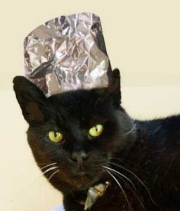Cat with tinfoil hat