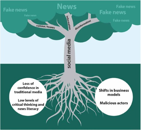 UNESCO Image showing the role of social media in fake news