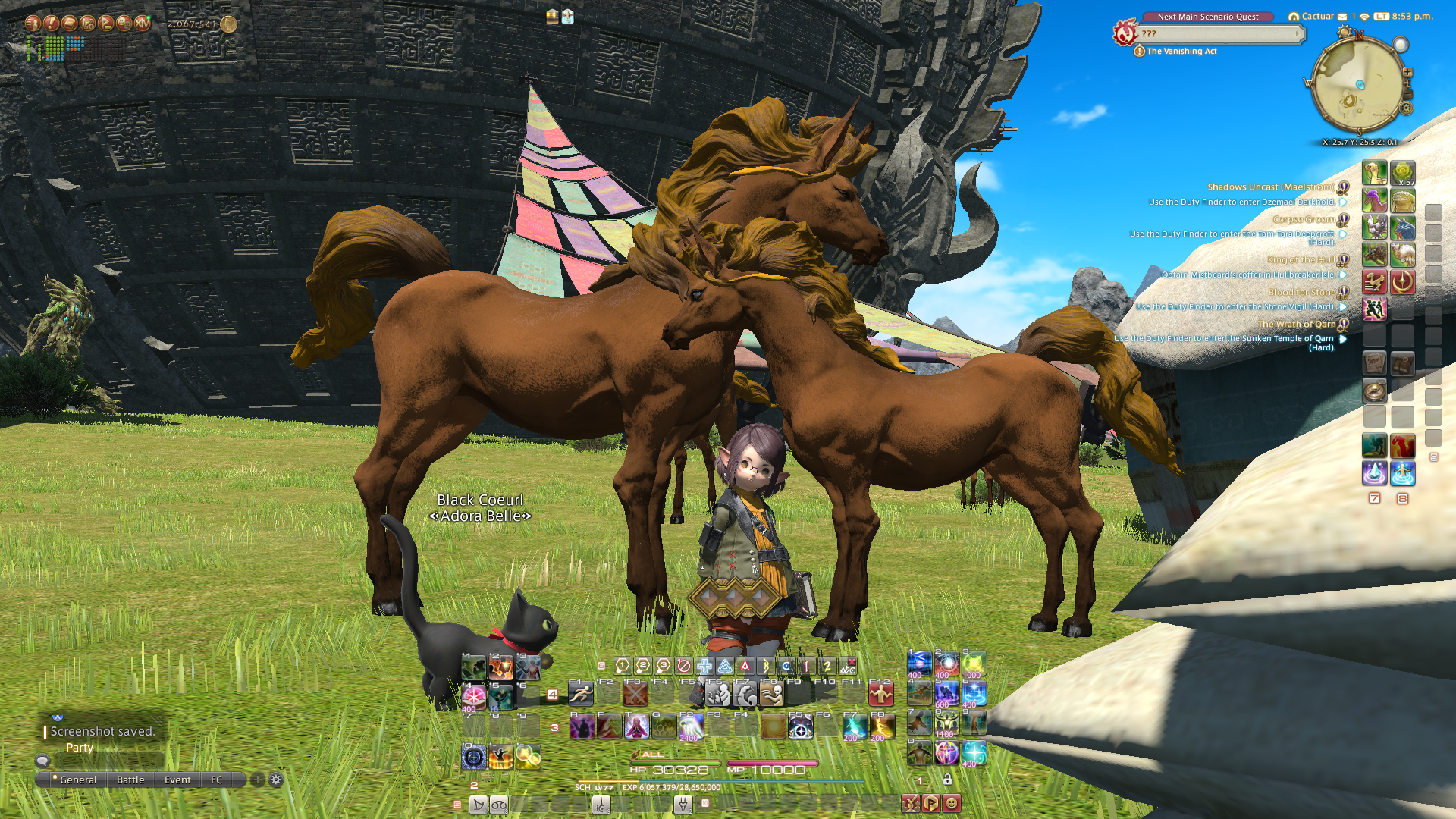 A screenshot from the video game Final Fantasy XIV showing the author's character, a female halfling in a green coat, standing in a grassy field by some horses